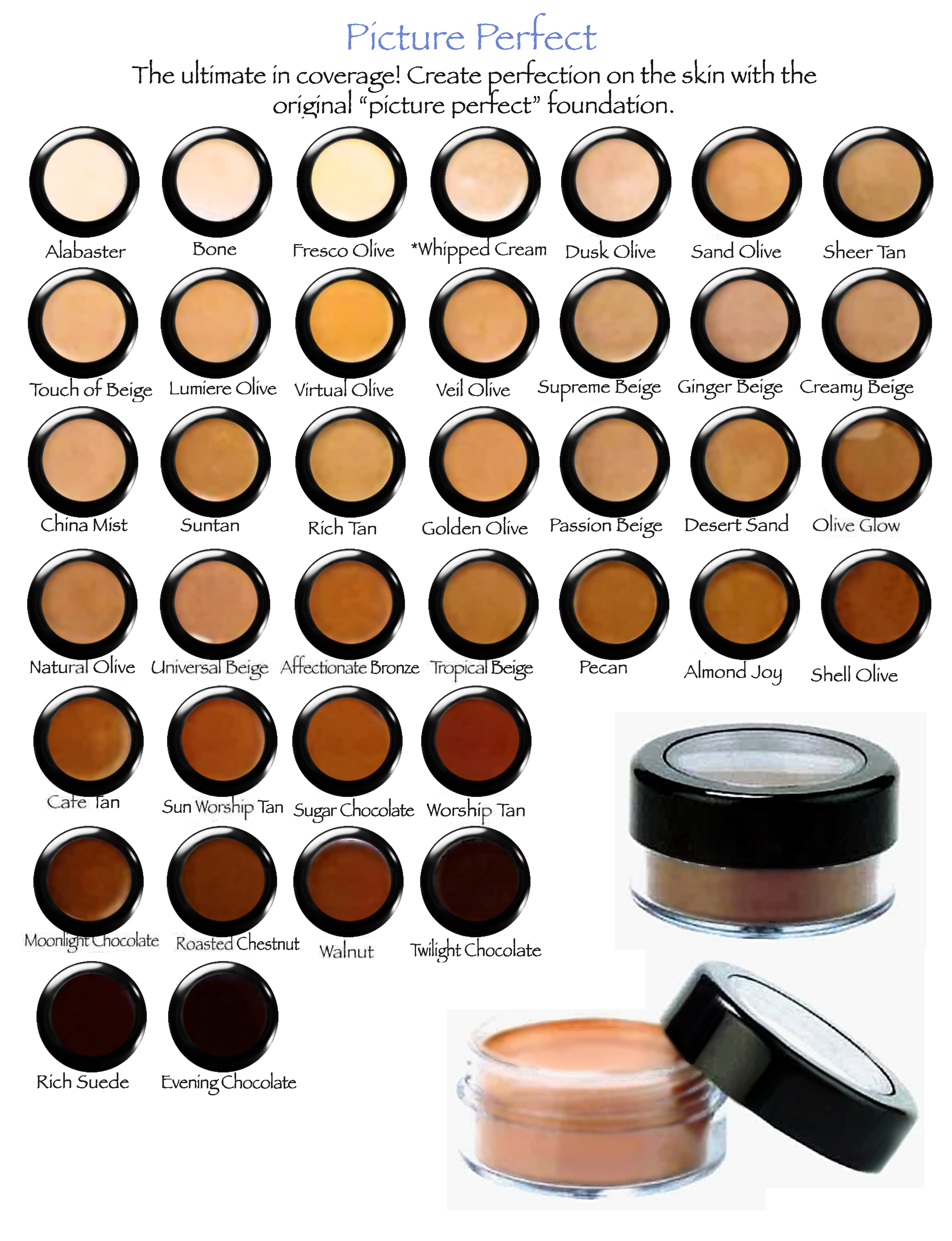 Picture Perfect Foundations Color Chart Derma Pro