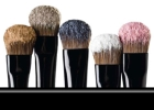 Brushes with eyeshadow powder